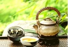 Защитит ли зеленый чай от алопеции?
